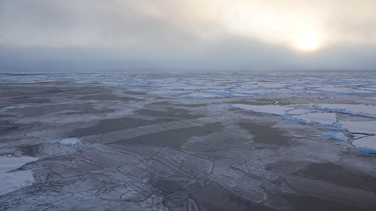 Prozesse_Arktis